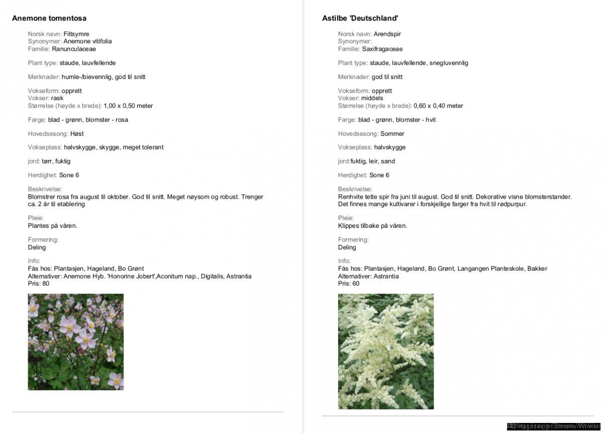 Eksempel plantekatalog